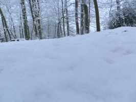 snow 66 by tegalus