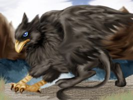Black Gryphon by shippeth