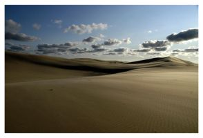 A Desert In Michigan by CrimsonAppassionata