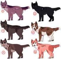 Quality Wolf Adopts: [For Points] by piano-skies