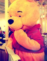 Pooh   atDisney World by xirunwithscissors