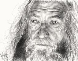 Gandalf by deku-dot