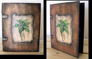 Box- Book Mandrake by oshuna