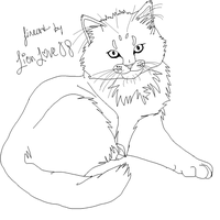 Maine Coon Lineart by LionLove08