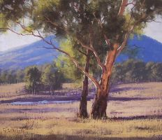 Hartley Gum by artsaus