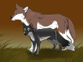 A Wolf and a Fox by JeweledFaith