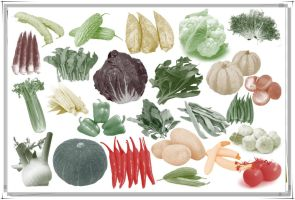 25 Green Vegetable Brushes for Photoshop by Jiangsir