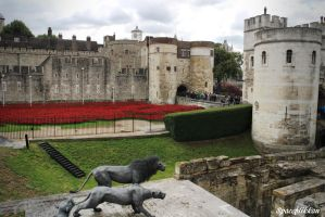 Lions guards the Towern of London by spaceflikkan