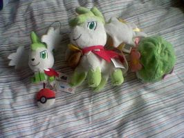 Shaymin Collection by Browntown747
