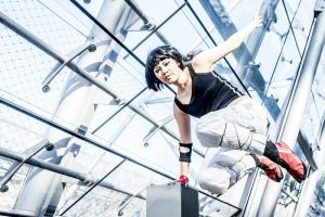 On Mirror's Edge: Freedom by AN0RIEL