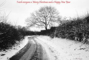 Merry Christmas 2014 by LordLJCornellPhotos