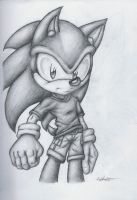 Sonic The Hedgehog by SonicTheDerp