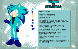 Storm the Hedgehog by SpaceStrippers