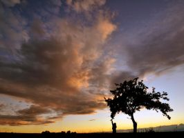 Girl , tree and sky by tomsumartin