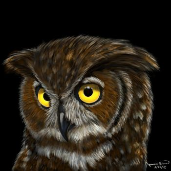 Nokomis the Great-Horned Owl by Dragonflm61