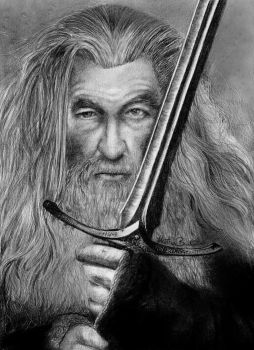 Gandalf! by Anadia-Chan