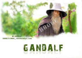 gandalf draw by ahmetbroge