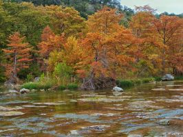 Fall along the Guadalupe River by labba1