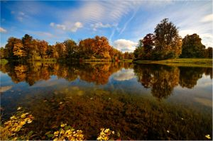 The colors of Fall... _1_ by my-shots