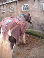 Horse blanket:: FINISHED by BraveAnimal