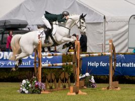 Jumping stock 39 by Kennelwood-Stock