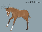 OVEC Club Fea - Foal by SageSinRiddle