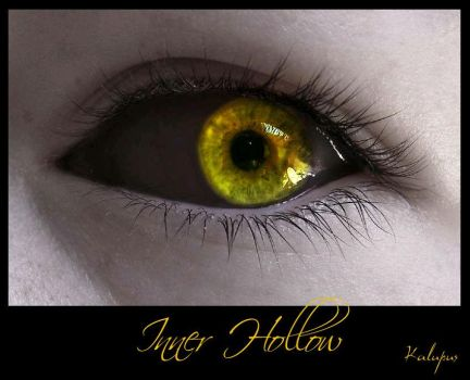 Inner Hollow by Kalupus