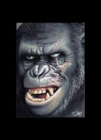 Koba -Planet of the Apes sketch card by Dr-Horrible