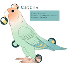 New Birb Reference by Mottimuoto