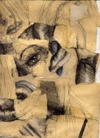 Cubist Study of Love by thanamosity