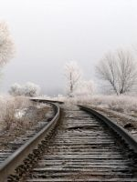 Frosty Tracks by tjsviews