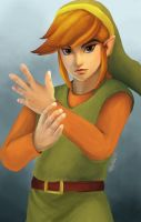 Classic Link Costume by sheiktxt