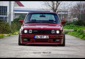 BMW E-30 Alpina - 16 by rugzoo