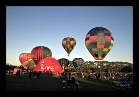 Balloon Festival by Paigesmum