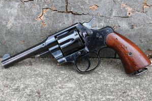 Colt Army Special 38 by PLutonius