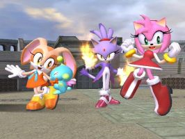 SSBB Sonic Girlz by BlueWolf-2020