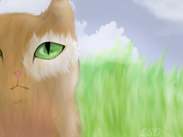 Brown cat (realistic) by Rainstarlightsky