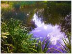 Bright reflection by leeri