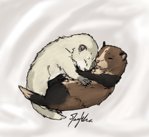 Lil ferrets need name by Meykka