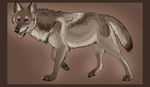 Natural wolf auction 1 - CLOSED by ForeignFrontierRanch