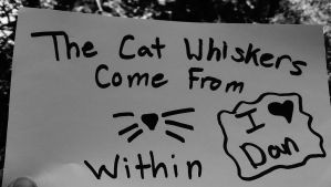 The Cat Whisker Come From Within by 10daisys
