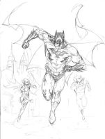 Batman , Robin and Nightwing by SpiderGuile