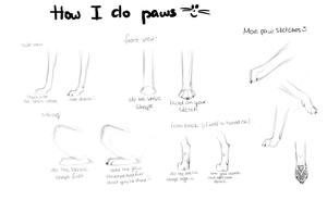 Canine/Wolf paw -tutorial- (more like sketches..) by Alukei