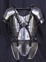 Steel leaf armour by LancierPilum