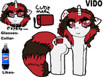 ++Vido pony ref sheet++ by Pancake-butterr