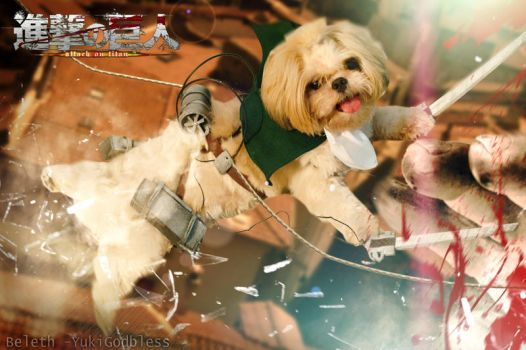Attack on Titan Puppy by yukigodbless