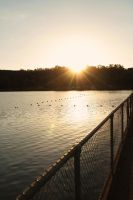 Sun on the Lake by sydneysomething