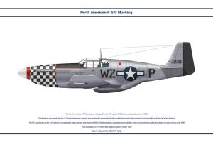 Mustang USAAF 84th FS 1 by WS-Clave