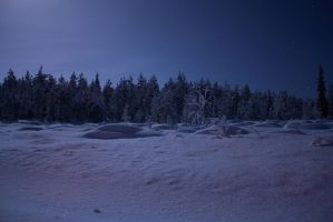 Nightscape by Esveeka-Stock