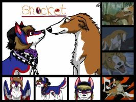 Shocket Collage For Shiba. by DixieDevated